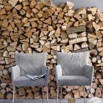 consigli legna da ardere