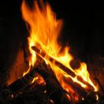 migliore legna da ardere